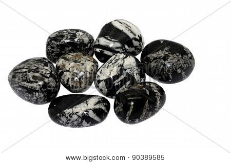 Chrysanthemum Stone - Flower Stone