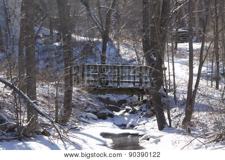 Bridge over Rocky Ravine