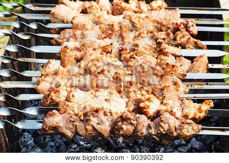 Skewers With Pork Shish Kebabs On Roaster