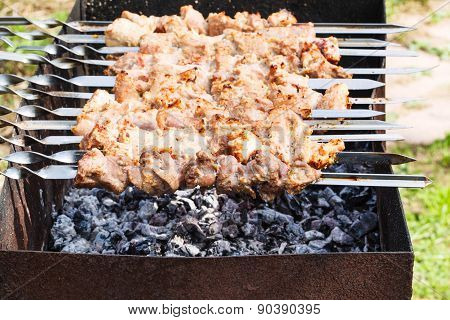 Skewers With Pork Shish Kebabs On Grill