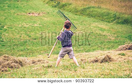 Boy raking dry hay with rake on field