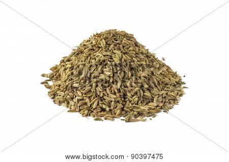 Spice Fennel.
