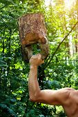 image of kettlebell  - Muscular man workout with wooden kettlebell in forest - JPG