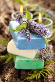 picture of fern  - Purple and green soap with lawender flowers and fern leaves - JPG