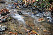 pic of trough  - Little autumn creek flowing through a stone trough - JPG
