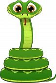 image of jungle snake  - illustration of green snake on a white background - JPG