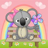 picture of koala  - Greeting card Koala with flower on a bench - JPG