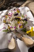 picture of edible  - Presentation of goat cheese rolls with edible flowers - JPG