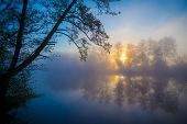 picture of morning  - Morning fog on a forest river - JPG