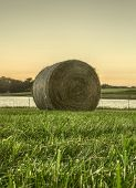 picture of hay bale  - A bale of hay sitting in the grass as the sun sets - JPG