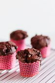 picture of chocolate muffin  - chocolate muffins - JPG
