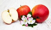 stock photo of apple blossom  - apples and apple tree blossoms on a wooden background - JPG