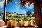foto of naturel  - Photo of a typical Sicilian farmhouse cheese - JPG
