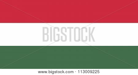 Authentic 1:2 Scale National Flag Of Hungary