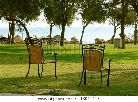 The chairs.