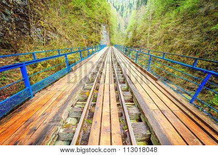 Bridge With The Narrow Gauge Railway.