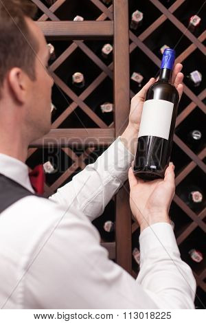 Attractive young sommelier is choosing perfect drink