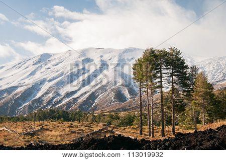 Mount Etna Landscapes