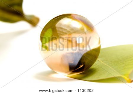 The Marble On  The Leaf