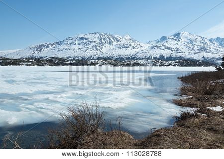 Icy Waters in the Yukon