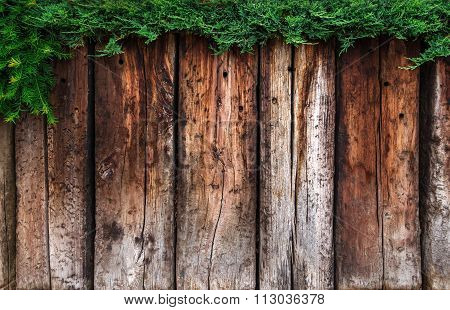 Brown wooden planks with green hedge