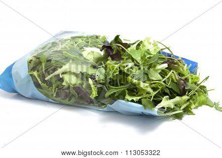 various seasonal salad packed
