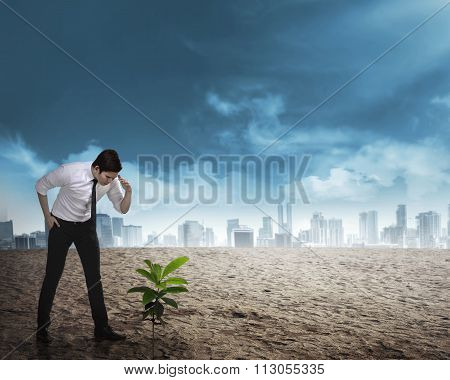 Asian Business Man Looking Down The Plant Seed Grow On The Desert