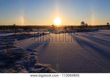 Lovely sunrise in winter bog