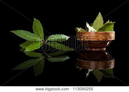 Bay Leaves Isolated On Black.