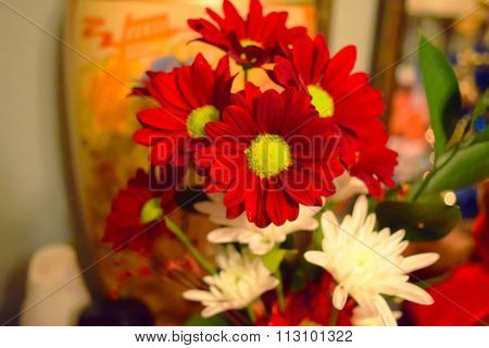 A bouquet of asters white and red