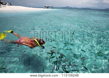 Young lady snorkeling with fish in a clear blue sea