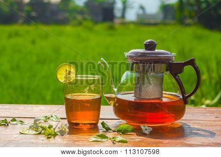 tea and nature
