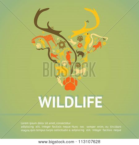 Wildlife Animal Infographic Template Layout Badge Background For Education Or Advertising Campaign I