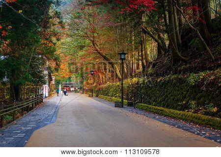 NIKKO JAPAN - NOVEMBER 17 2015: The Road to Taiyuinbyo Shrine and Futarasan-jinja Shrine in Nikko Tochigi Japan