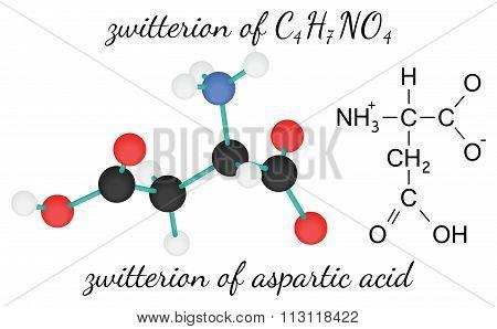 C4H7NO4 zwitterion of aspartic acid amino acid molecule
