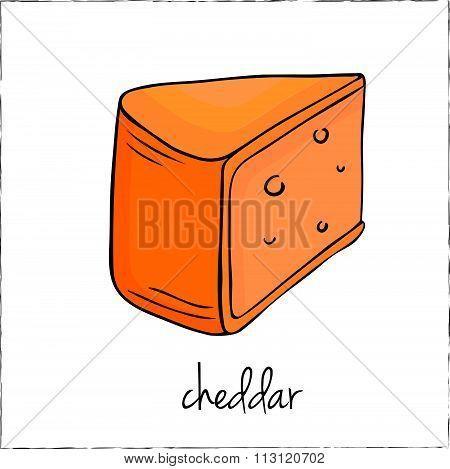 Cut Sliced Cheese Assortment. Vector Illustration.