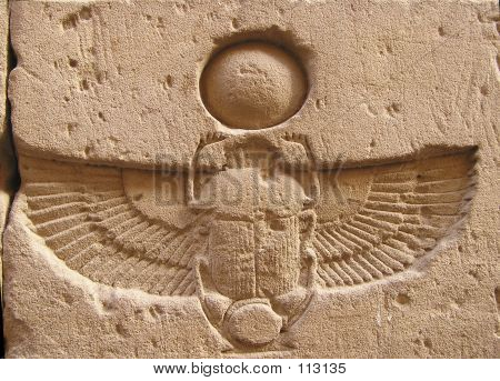 Winged Scarab Beetle
