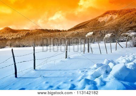 Enclosure In Snowy Field