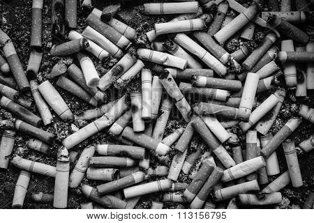 Black And White Many Dirty Cigarettes Butts Background