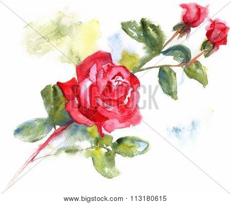 Artistic Drawing Of Red Rose With Leaves And Rose Buds