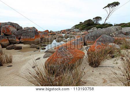 Orange Rocks, Tasmania