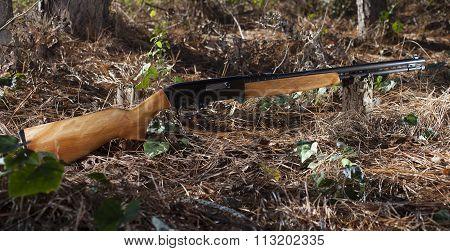 Rimfire Weapon