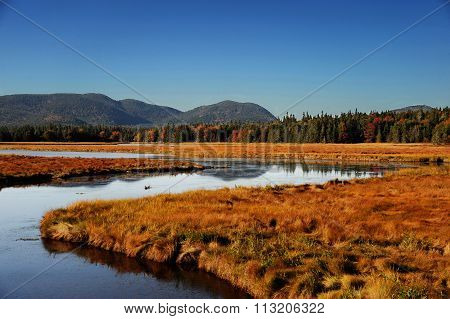 winding river, autumn forest and mountain