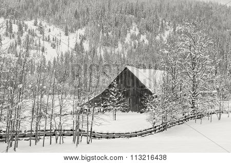 Barn In Winter Scenic.