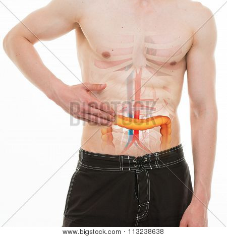 Abdominal Pain - Colon Intestine Right Side Pain - Real Anatomy