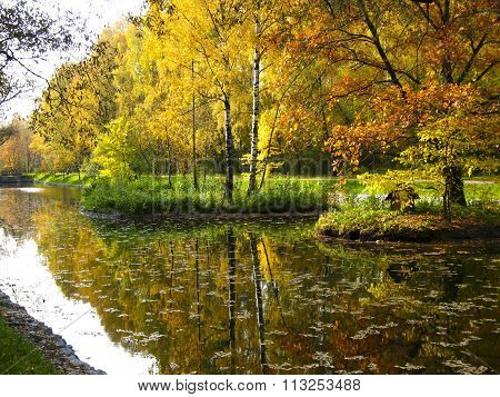 Autumn landscape - two little islands with red and yellow trees on pond forest around. Recorded in Sokolniki park in Moscow.