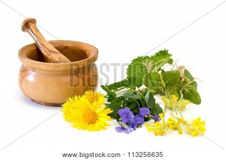 Medicinal Plants With Mortar And Pestle