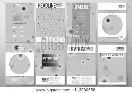 Set of business templates for brochure, flyer or booklet. Molecular research, cells in gray, science