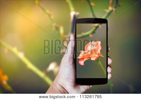 Modern Mobile Phone In The Hand.