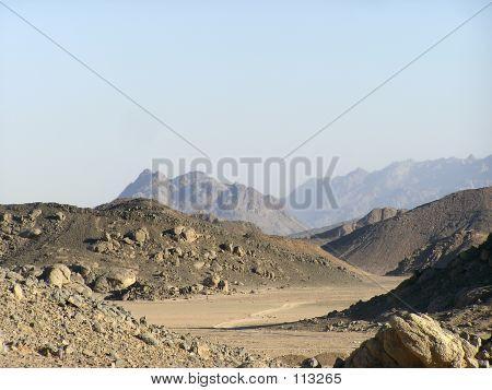 Arabian Sand Dunes 2